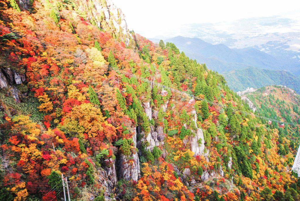 (ភាសាខ្មែរ) ស្លឹកឈើពណ៌ក្រហមសរទរដូវដែលគេគយគន់ពី Ropeway 【Japan view】