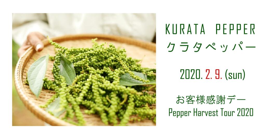 (日本語) 2020年クラタペッパー収穫体験ツアー開催のおしらせ