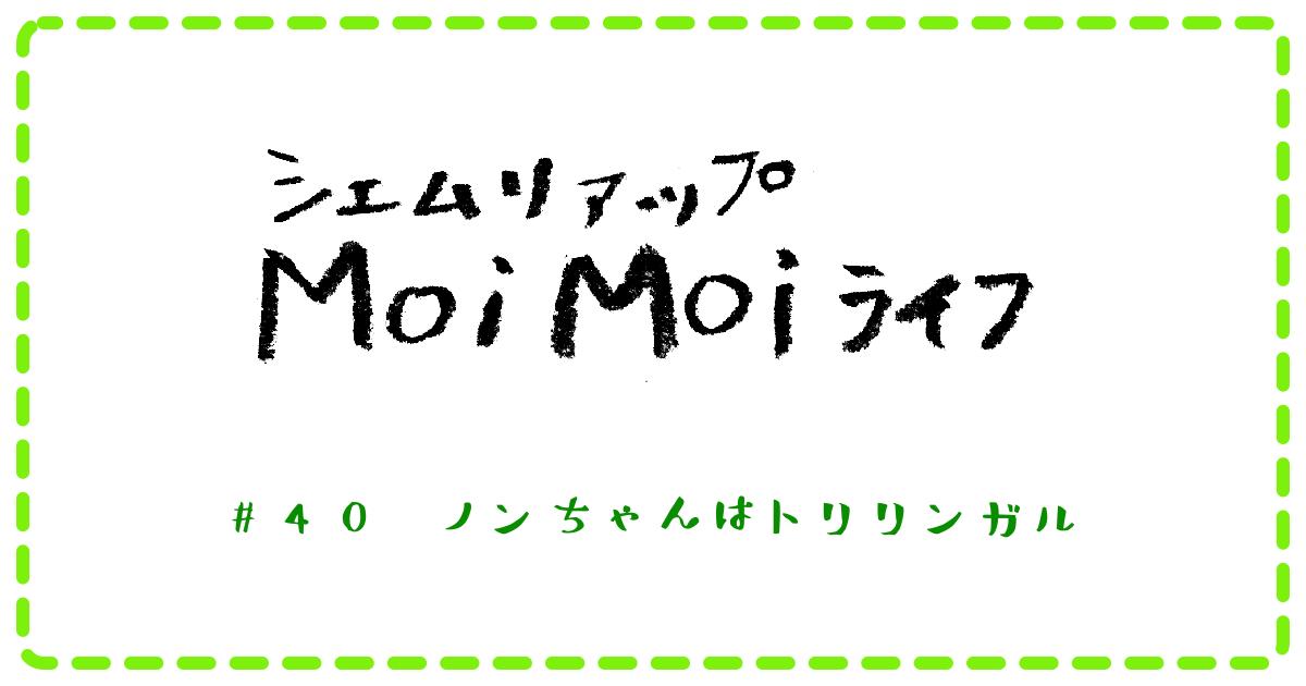 (日本語) Moi Moi ライフ #40 ノンちゃんはトリリンガル
