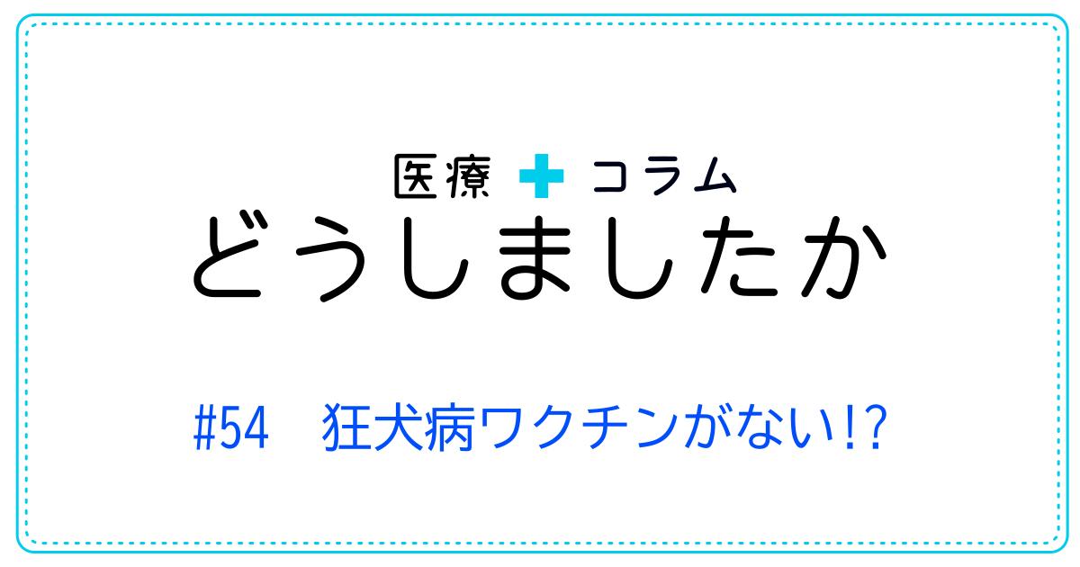 (日本語) どうしましたか #54 狂犬病ワクチンがない!?