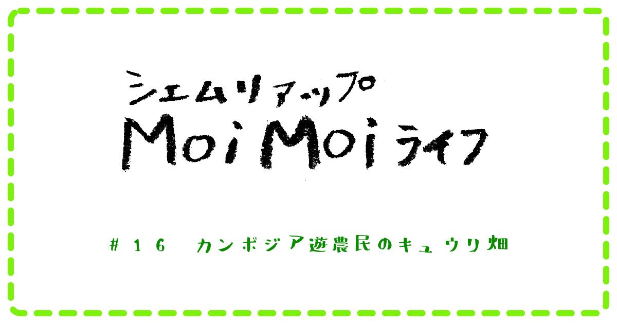 (日本語) Moi Moi ライフ #16 カンボジア遊農民のキュウリ畑
