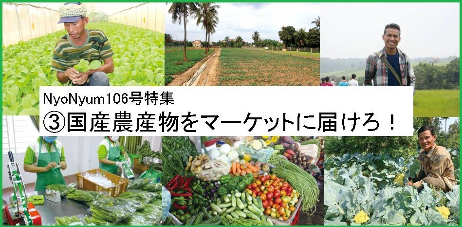 (日本語) NyoNyum106号特集:③国産農産物をマーケットに届けろ!