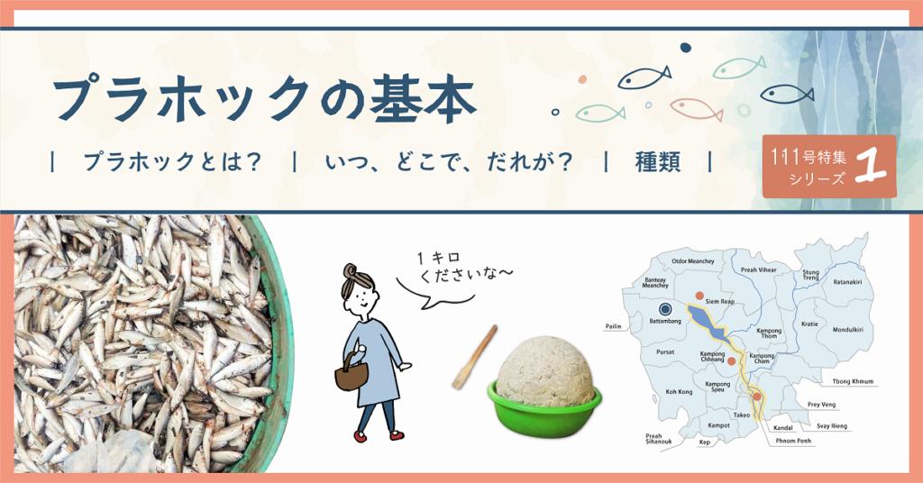 (日本語) NyoNyum111号特集:①プラホックの基本