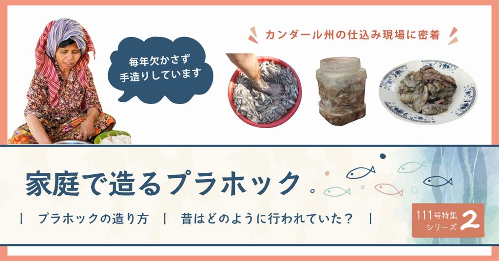 (日本語) NyoNyum111号特集:②家庭で造るプラホック